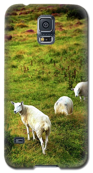 Galaxy S5 Case featuring the photograph Rural Idyll. Wicklow. Ireland by Jenny Rainbow