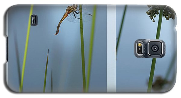 Rushes And Dragonfly Galaxy S5 Case