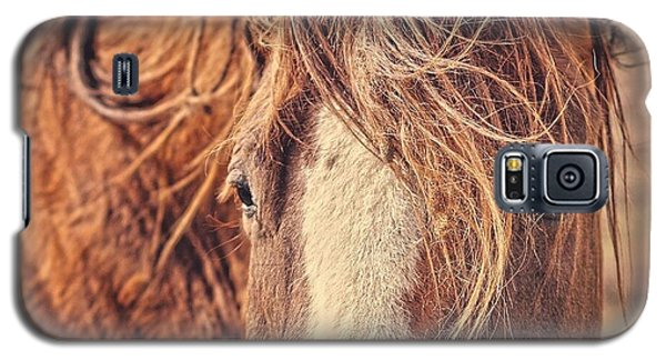 Galaxy S5 Case featuring the photograph Rustic Eyes by Amanda Smith