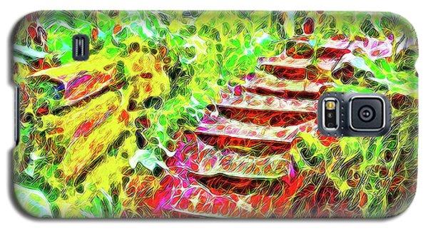 Galaxy S5 Case featuring the digital art Rustic Step Path Through The Woods - Tamalpais California by Joel Bruce Wallach