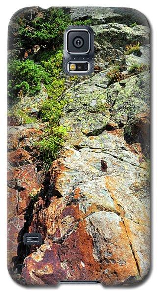 Rusty Rock Face Galaxy S5 Case