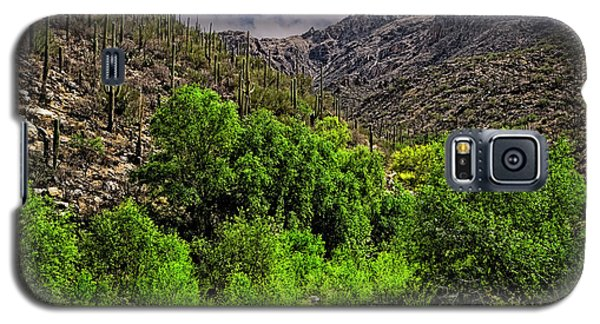 Galaxy S5 Case featuring the photograph Sabino Canyon H33 by Mark Myhaver