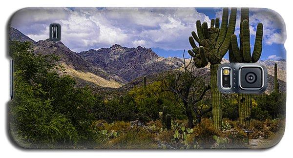 Sabino Canyon No4 Galaxy S5 Case