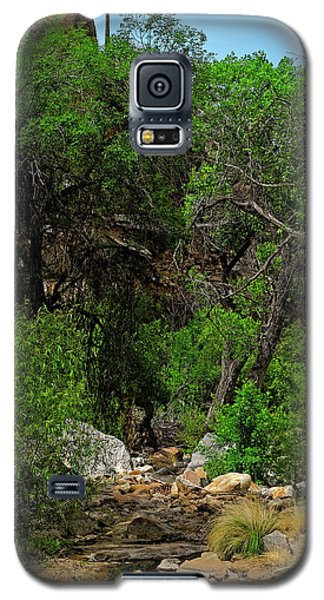 Galaxy S5 Case featuring the photograph Sabino Canyon V49 by Mark Myhaver