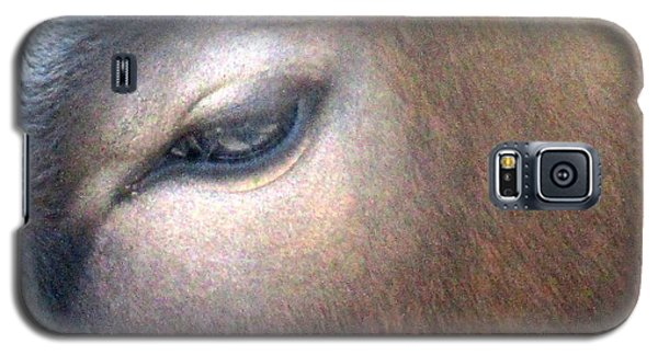 Galaxy S5 Case featuring the photograph Sacred Cow 5 by Randall Weidner