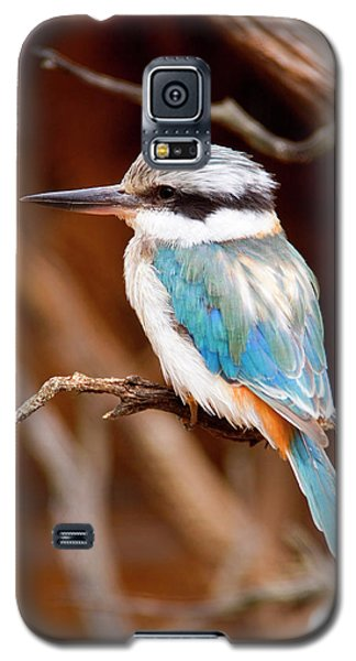 Sacred Kingfisher Galaxy S5 Case