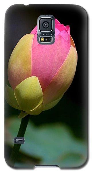 Sacred Lotus Bud 3 Galaxy S5 Case