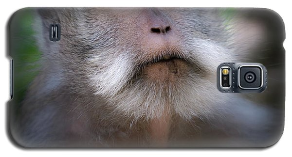 Helicopter Galaxy S5 Case - Sacred Monkey Forest Sanctuary by Larry Marshall