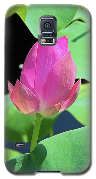 Sacred Pink Galaxy S5 Case