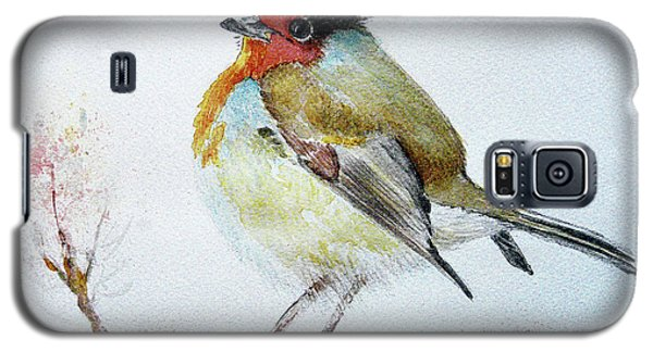 Sad Robin Galaxy S5 Case by Jasna Dragun