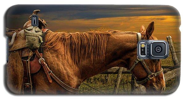 Saddle Horse On The Prairie Galaxy S5 Case