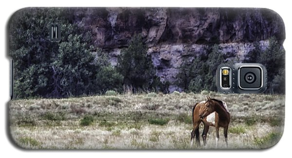 Safe In The Valley Galaxy S5 Case by Elizabeth Eldridge