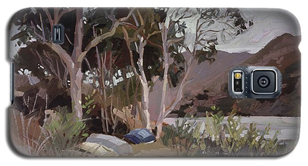 Safe Shelter  - Plein Air - Catalina Island Galaxy S5 Case