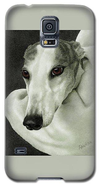 Safety Galaxy S5 Case