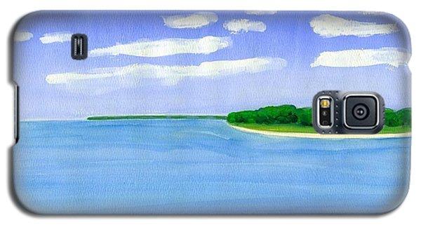 Sag Harbor, Long Island Galaxy S5 Case by Dick Sauer