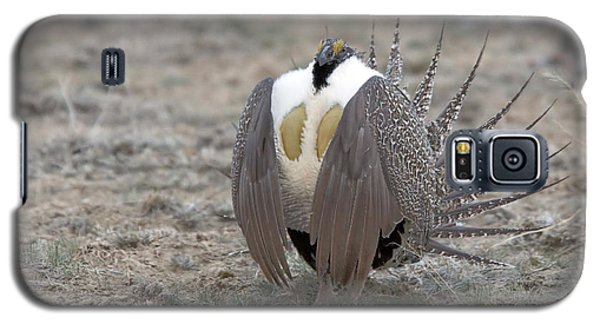 Sage Grouse Galaxy S5 Case