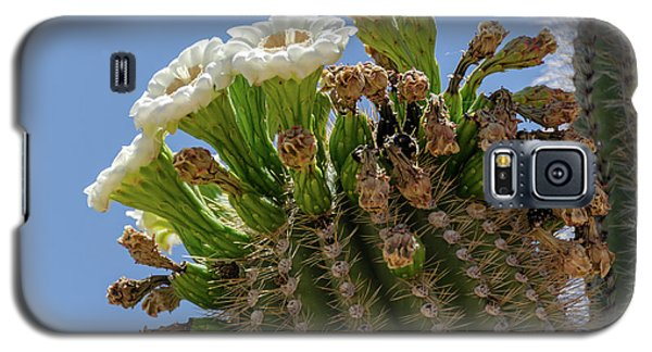 Saguaro Blooms Galaxy S5 Case