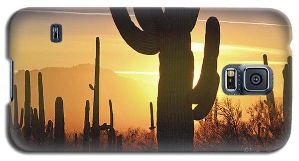Saguaro Cactus Golden Sunset Mountain Galaxy S5 Case by Andrea Hazel Ihlefeld