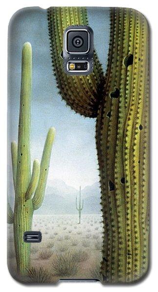 Saguaro Cactus Landscape Galaxy S5 Case