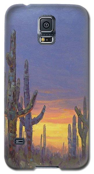 Grand Canyon Galaxy S5 Case - Saguaro Mosaic by Cody DeLong