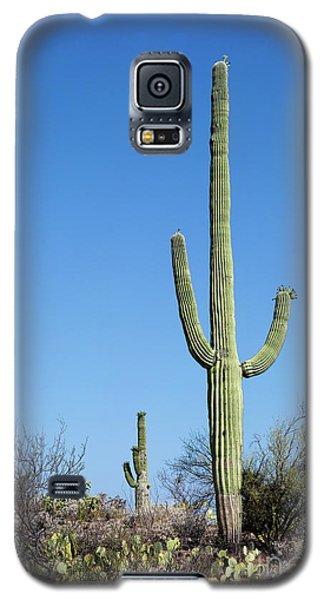 Saguaro National Park Arizona Galaxy S5 Case