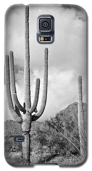 Saguaro Galaxy S5 Case
