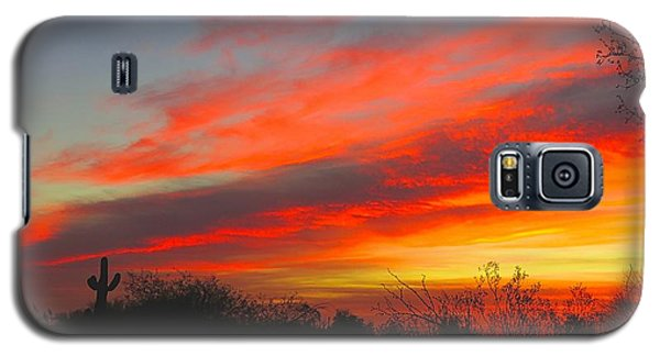 Saguaro Winter Sunrise Galaxy S5 Case
