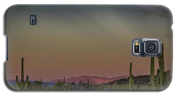 Saguaros Salute Rays Rising Galaxy S5 Case