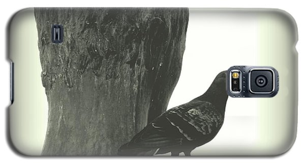 Saint Francis Galaxy S5 Case