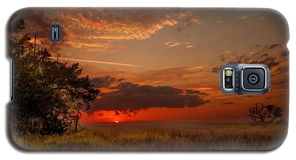 Saint Simons Island Salt Marsh Twilight Galaxy S5 Case