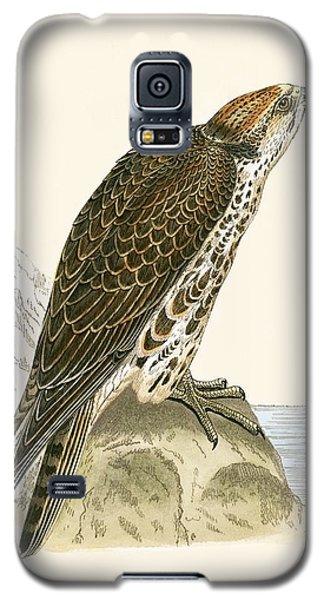 Saker Falcon Galaxy S5 Case