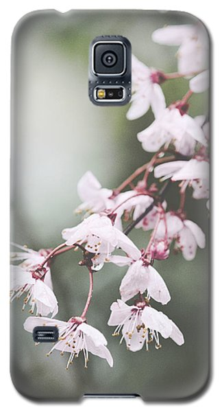 Sakura #278 Galaxy S5 Case