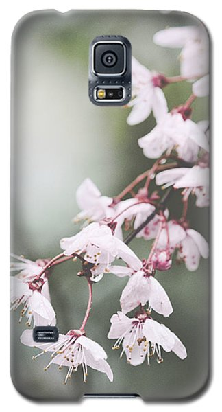 Sakura #278 Galaxy S5 Case