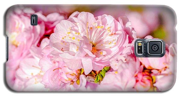 Galaxy S5 Case featuring the photograph Sakura Cherry Flower - Wedding Bouquet by Alexander Senin