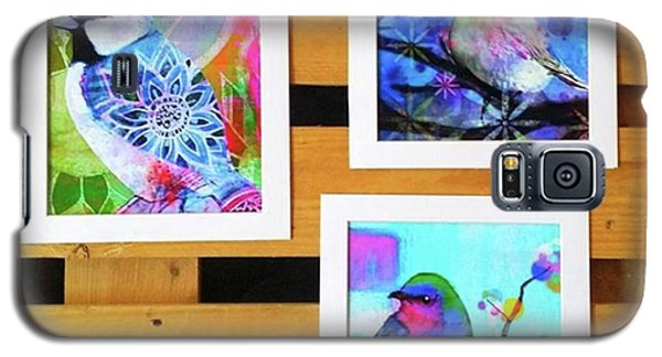 Galaxy S5 Case - *sale* 3 11 X 14 In. Bird Prints With by Robin Mead