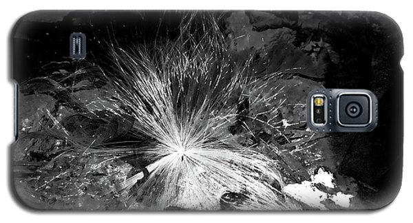 Salix Seed Galaxy S5 Case
