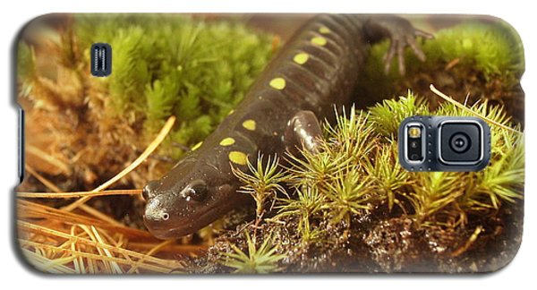Galaxy S5 Case featuring the painting Sally The Spotted Salamander by Martha Ayotte