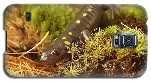 Sally The Spotted Salamander Galaxy S5 Case
