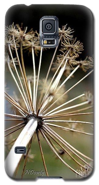 Salsify Stems Galaxy S5 Case