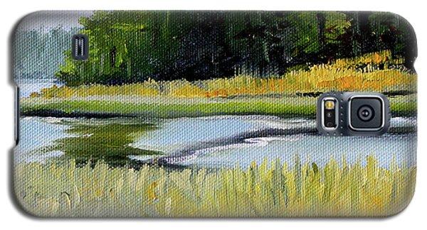 Galaxy S5 Case featuring the painting Salt Creek by Nancy Merkle