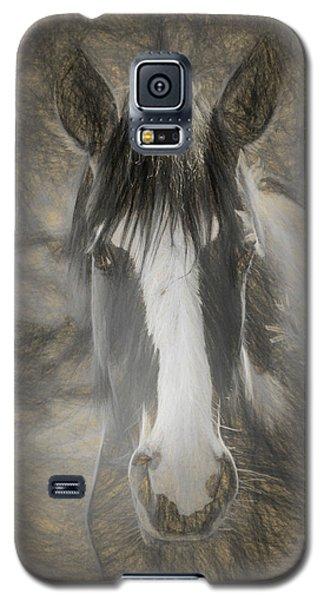 Salt River Stallion Galaxy S5 Case