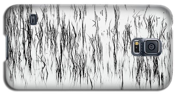 San Diego River Grass In Black And White Galaxy S5 Case