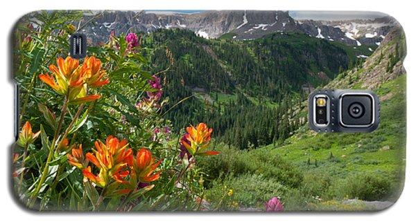 San Juans Indian Paintbrush Landscape Galaxy S5 Case