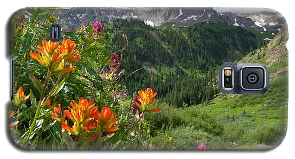 San Juans Indian Paintbrush Landscape Galaxy S5 Case