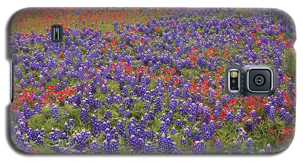 Sand Bluebonnet And Paintbrush Galaxy S5 Case