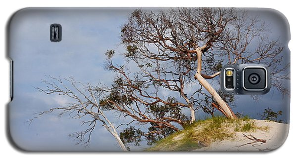 Sand Dune With Bent Trees Galaxy S5 Case