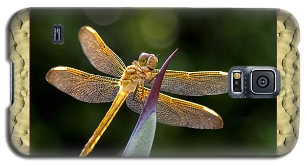 Galaxy S5 Case featuring the photograph Sandflow Dragonfly by Bell And Todd