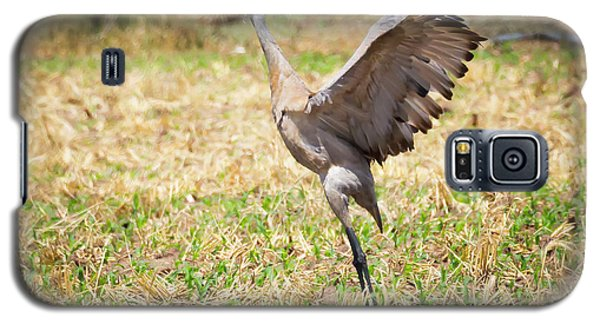 Galaxy S5 Case featuring the photograph Sandhill Crane Morning Stretch by Ricky L Jones