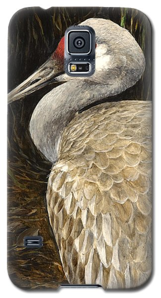 Galaxy S5 Case featuring the painting Sandhill Crane - Realistic Bird Wildlife Art by Karen Whitworth
