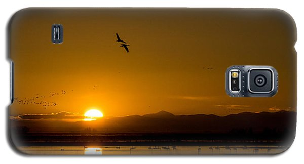 Sandhill Crane Sunrise Galaxy S5 Case